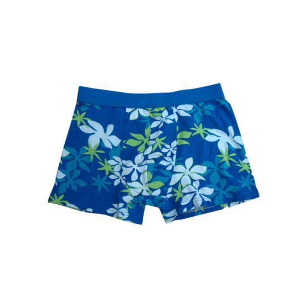 Violet Men's Boxer-JJsoftwear